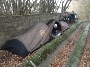 Tent twins